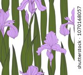 hand drawn iris flowers. vector ... | Shutterstock .eps vector #1070168057