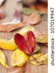 Heart Shaped Autumn Leaf On...