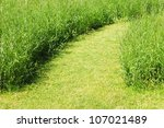 Pathway on green grass field - stock photo