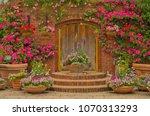 Beautiful Botany Garden...