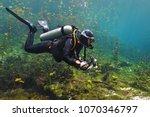 scuba diver in the cenote lake. ...   Shutterstock . vector #1070346797