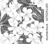 seamless pattern  background... | Shutterstock .eps vector #1070351183