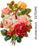 A vintage rose bouquet illustration (circa 1881) - stock photo