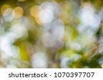 blurred of bokeh for background. | Shutterstock . vector #1070397707