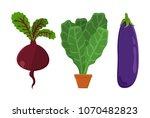 vegetarian food set beetroot ...   Shutterstock .eps vector #1070482823