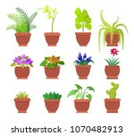 cactus and collection of plants ... | Shutterstock .eps vector #1070482913