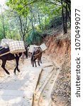 Small photo of Transporting gravel equine/mountain cargo Hummer
