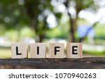 life word on wood blocks with...   Shutterstock . vector #1070940263