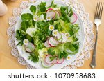 spring salad with chickweed ... | Shutterstock . vector #1070958683