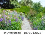 stone path through pink  blue... | Shutterstock . vector #1071012023