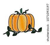 doodle organic pumpkin...   Shutterstock .eps vector #1071093197