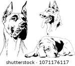 vector drawings sketches... | Shutterstock .eps vector #1071176117