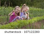 a girl shows deracinate weeds.... | Shutterstock . vector #107122283