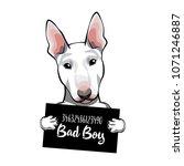 bull terrier criminal. arrest... | Shutterstock .eps vector #1071246887