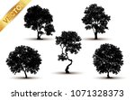 collection  tree silhouette... | Shutterstock .eps vector #1071328373