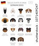dogs by country of origin.... | Shutterstock .eps vector #1071409247