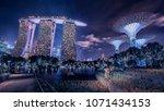 april 2018   singapore   garden ... | Shutterstock . vector #1071434153