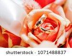 golden wedding rings lie inside ... | Shutterstock . vector #1071488837