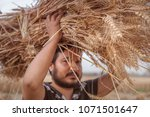 indian man carrying freshly... | Shutterstock . vector #1071501647