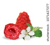 fresh  nutritious and tasty... | Shutterstock .eps vector #1071627377