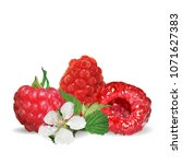 fresh  nutritious and tasty... | Shutterstock .eps vector #1071627383
