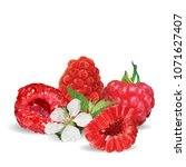 fresh  nutritious and tasty... | Shutterstock .eps vector #1071627407