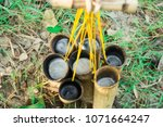 nectar from sugar palm in... | Shutterstock . vector #1071664247