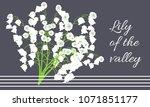 may lily. vector illustration... | Shutterstock .eps vector #1071851177