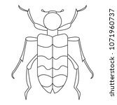 beetle icon. simple element... | Shutterstock .eps vector #1071960737