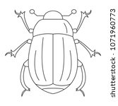 beetle icon. simple element... | Shutterstock .eps vector #1071960773