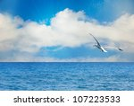 Nature Seascape With Seagull I...