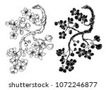 hand drawn cherry branches with ... | Shutterstock .eps vector #1072246877