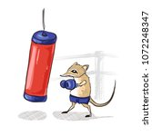 elephant shrew boxing    vector ... | Shutterstock .eps vector #1072248347