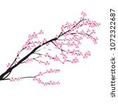 spring blooming tree branches ... | Shutterstock .eps vector #1072322687