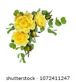 yellow rose flowers with... | Shutterstock . vector #1072411247