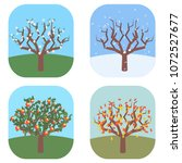 apple tree at four seasons ... | Shutterstock .eps vector #1072527677