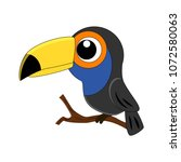 cute cartoon toucan vector... | Shutterstock .eps vector #1072580063