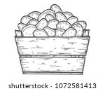 potato vector illustration. box ... | Shutterstock .eps vector #1072581413