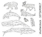 vector graphic lines of arctic...   Shutterstock .eps vector #1072690817