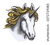 unicorn horse sketch of magic... | Shutterstock .eps vector #1072719383