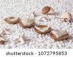 nourishing food bird nest   Shutterstock . vector #1072795853