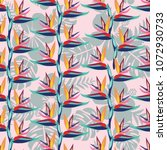 pattern with bird of paradise... | Shutterstock .eps vector #1072930733