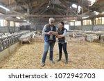 sheep breeder with veterinary... | Shutterstock . vector #1072942703