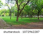 nature green tree jogging path | Shutterstock . vector #1072962287