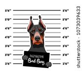 doberman prisoner. arrest photo.... | Shutterstock .eps vector #1073039633