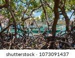coron palawan philippines april ...   Shutterstock . vector #1073091437