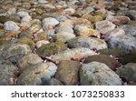 weather beaten rocks   Shutterstock . vector #1073250833