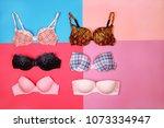 set of different bras on... | Shutterstock . vector #1073334947