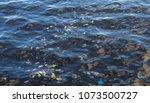 garbage in sea water. plastic... | Shutterstock . vector #1073500727