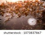 antique pocket watch under...   Shutterstock . vector #1073837867